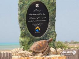 جزیره لاکی- جزیره لاکپشت ها